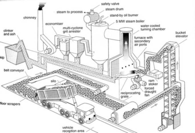 Biomass Power Plant Diagram